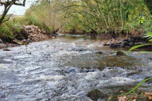 ضریب زبری در رودخانهها